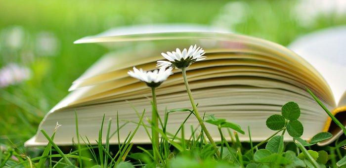 Selbstliebe – Lesen